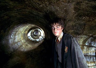neko random things i like harry potter and the chamber of  i gotta admit harry survived unrealistically well for a 2nd year against a dinosaur sized snake yet he couldn t do anything against nagini in his last