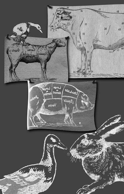 """Quelques illustrations pour """"Les Régimes du Monde""""......"""