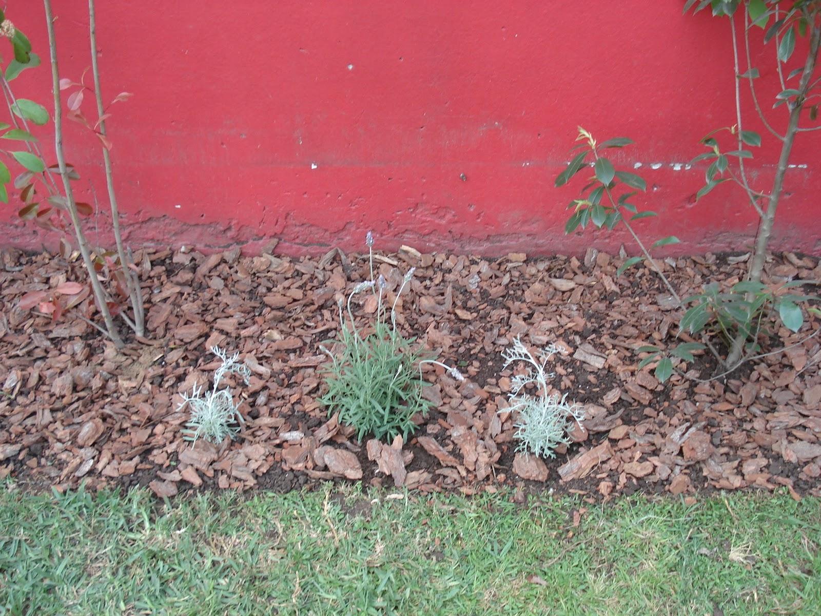 Reverdir jardineria y paisajismo jardin cantero for Pdf jardineria y paisajismo