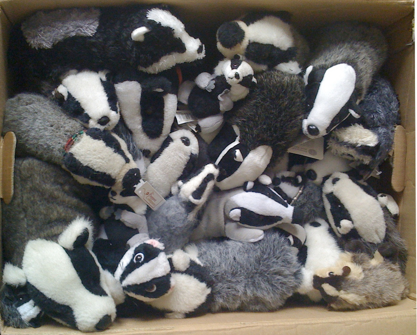 A cardboard box of toy badgers