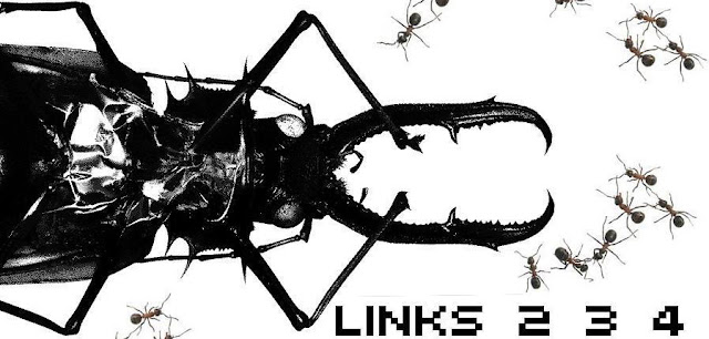 Links 2 3 4 promo
