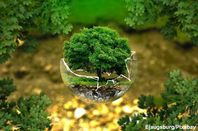 Engenheiro, ambiental, engenheiro ambiental, dia, dia do engenheiro, dia do engenheiro ambiental, engenharia, engenharia ambiental, meio ambiente, environmental, engineer, environmental engineer, day environmental engineer