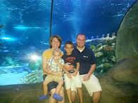 Aquarium 2014