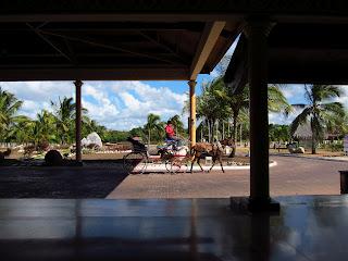 Playa Pesquero Cuba horse and carriage