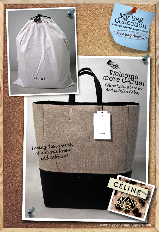 celine bi-material luggage handbag