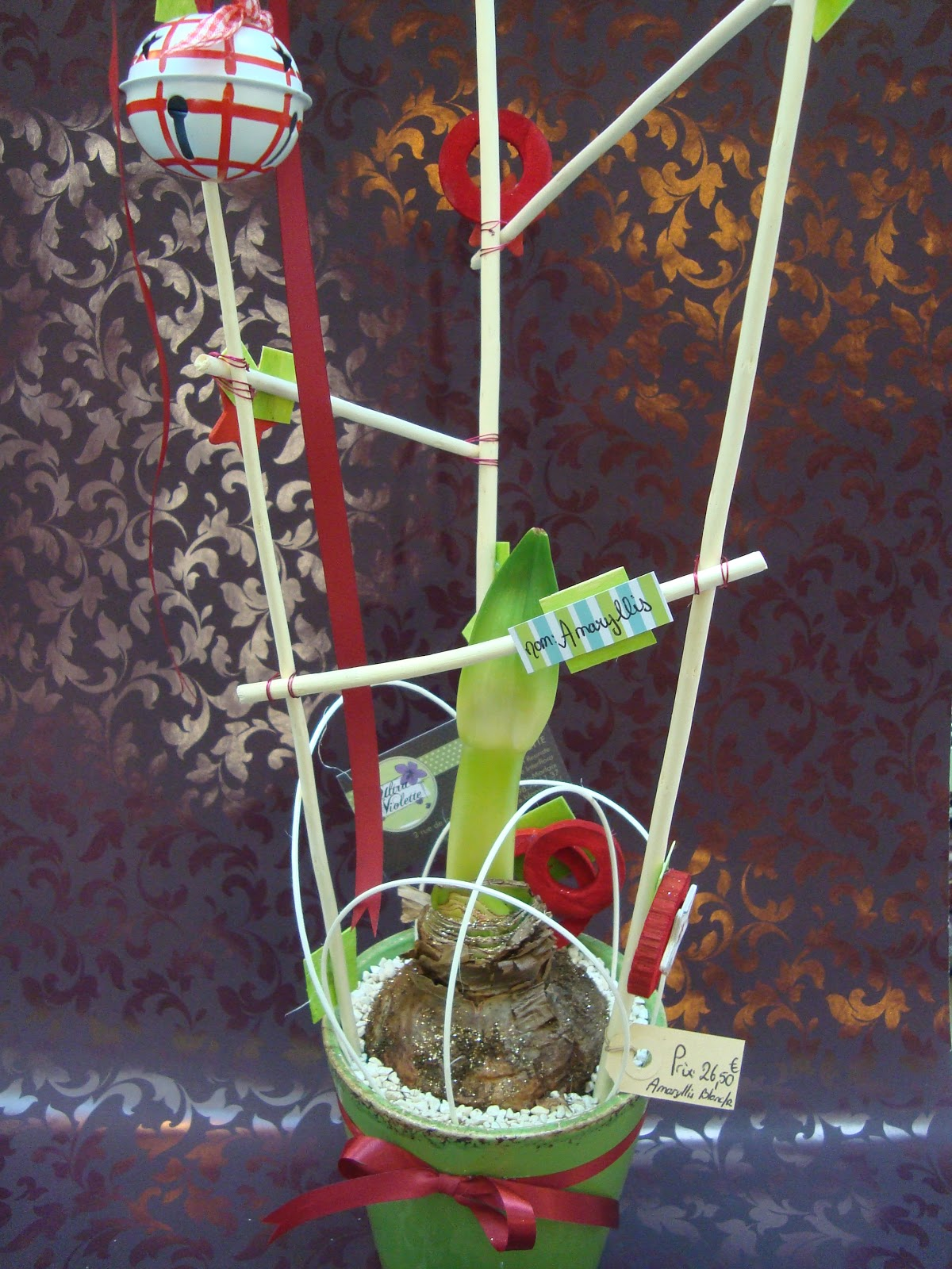 Ma tre artisan fleuriste les amaryllis for Amaryllis fleuriste