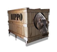 http://2.bp.blogspot.com/-Cbzz0oUpuXE/UFp3aDFqZbI/AAAAAAAAC00/ObVcs8rIGIY/s1600/hippo+2.jpg