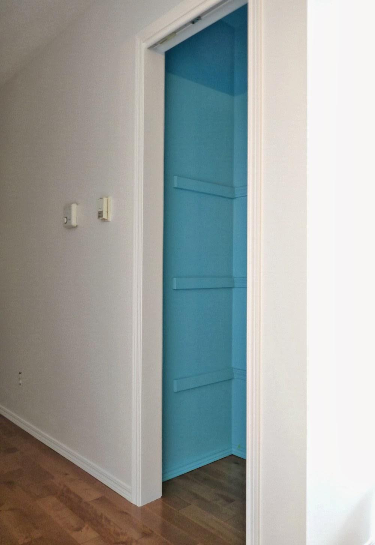 Closet painted aqua inside