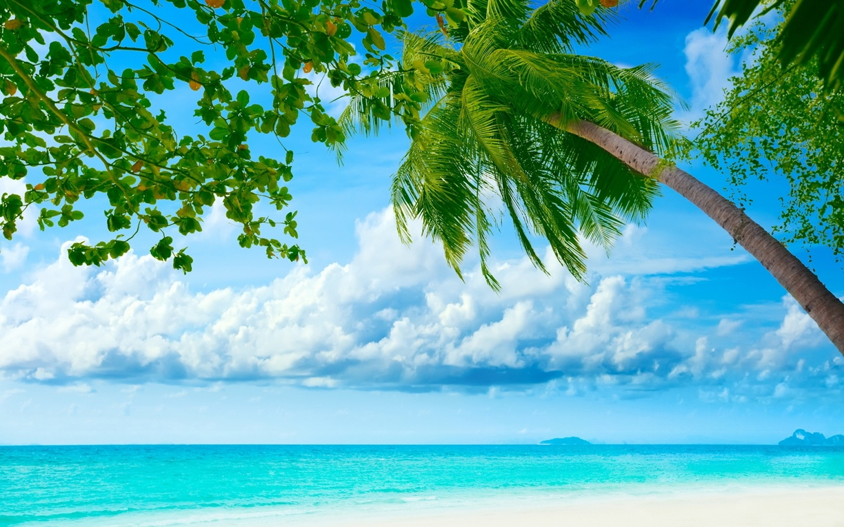 Exotic summer day background beach backgrounds