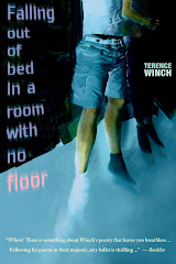 FALLING OUT OF BED IN A ROOM WITH NO FLOOR by Terence Winch