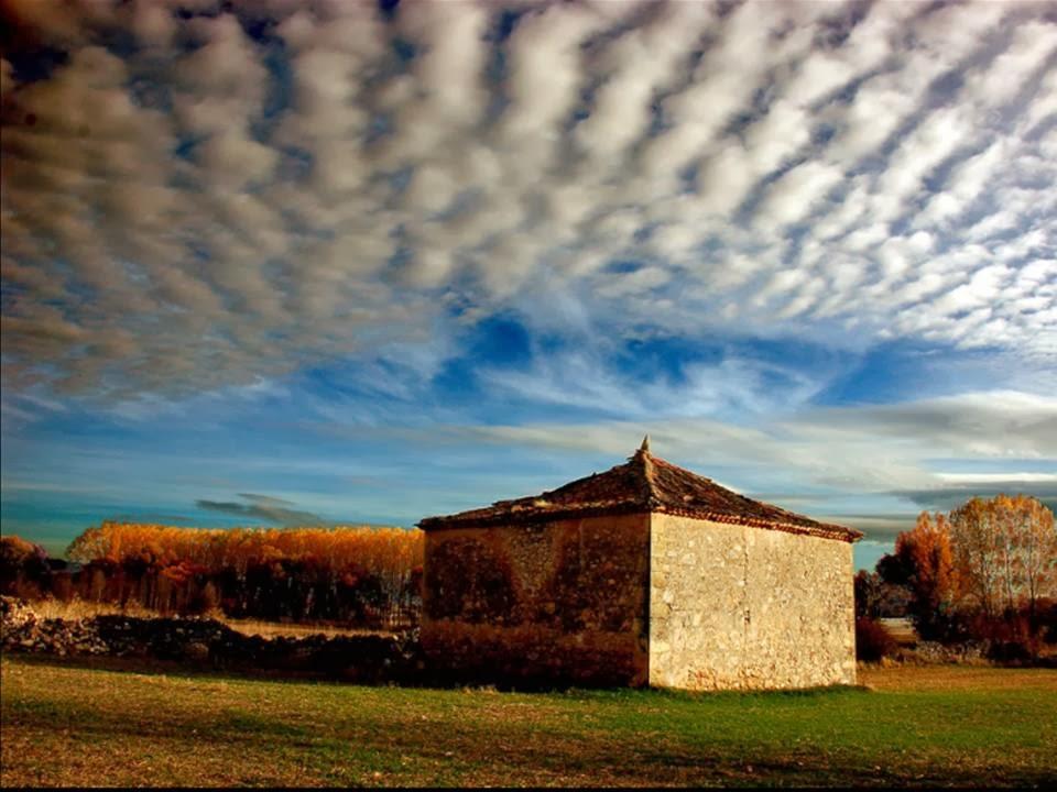 Palomar en Barbolla, Segovia