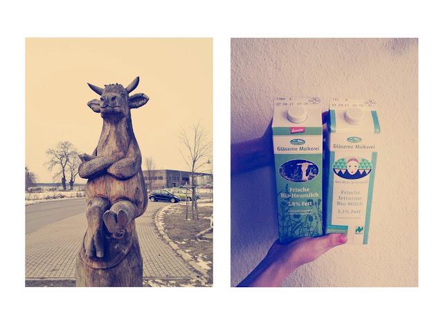 Gläserne Molkerei Kuh Milch