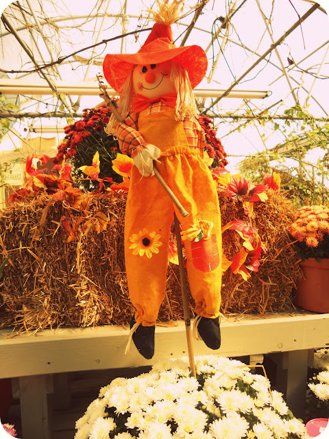 New England Halloween Fall Harvest