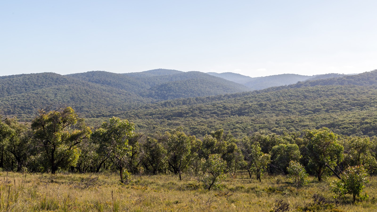 great otways national park