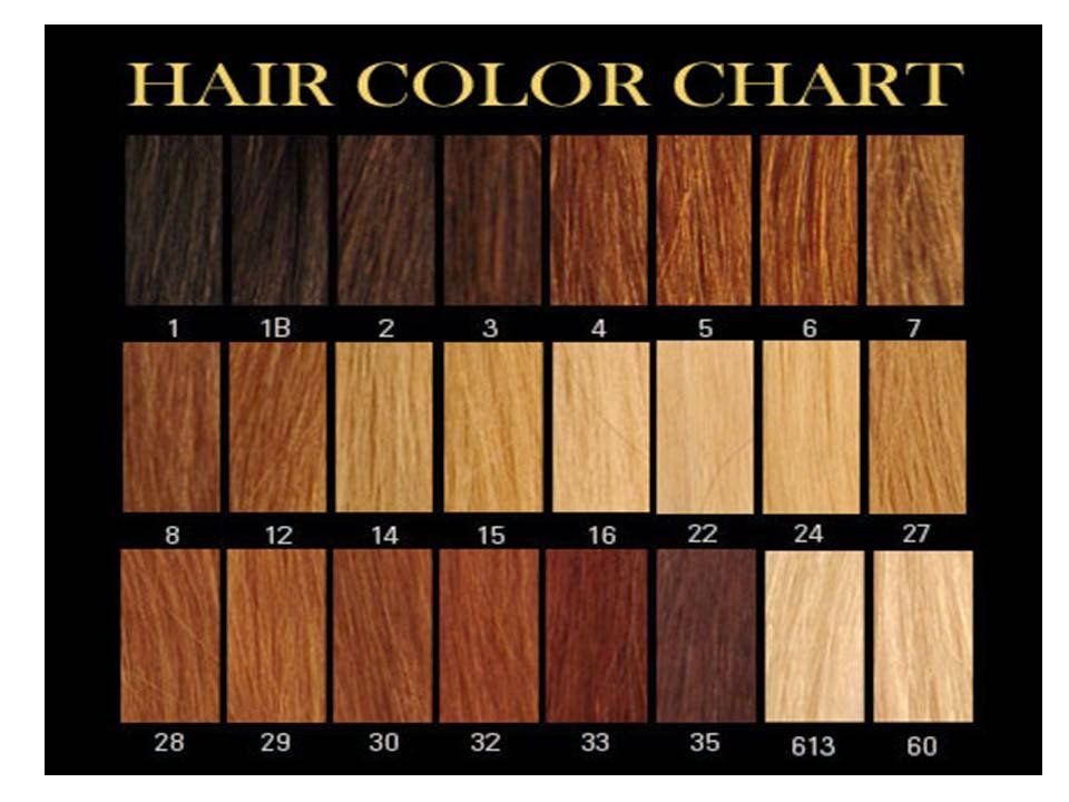 SUPER POWER HAIR LEARN WHICH NUMBER IS YOUR HAIR COLOUR