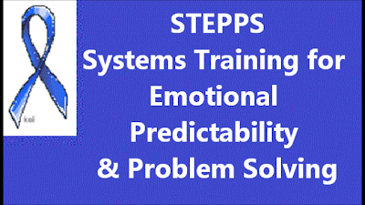 STEPPS,Systems training for emotional predictability,problem solving