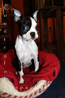 Hi! I'm Stella!!