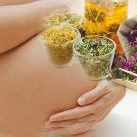 kısırlık ve bitkiler kaliteli sperm yumurtlama cinsellik gebe faydalı zararlı bitkiler gebe yararlı yararsız bitkiler