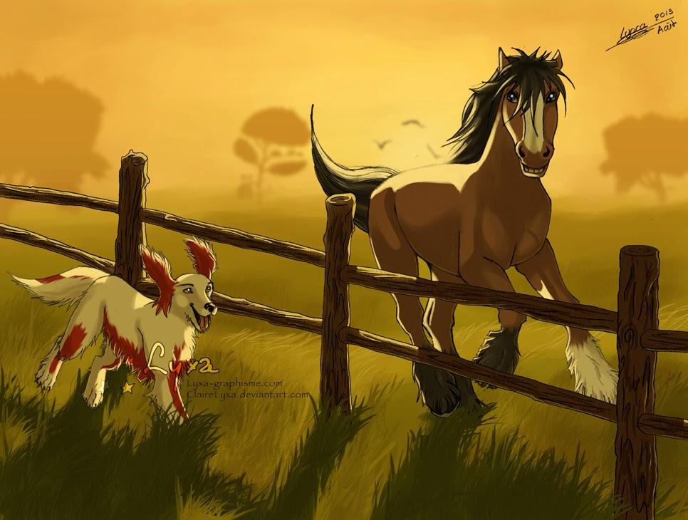 Animalia desenhos selvagens 10 - Dessin cheval de trait ...