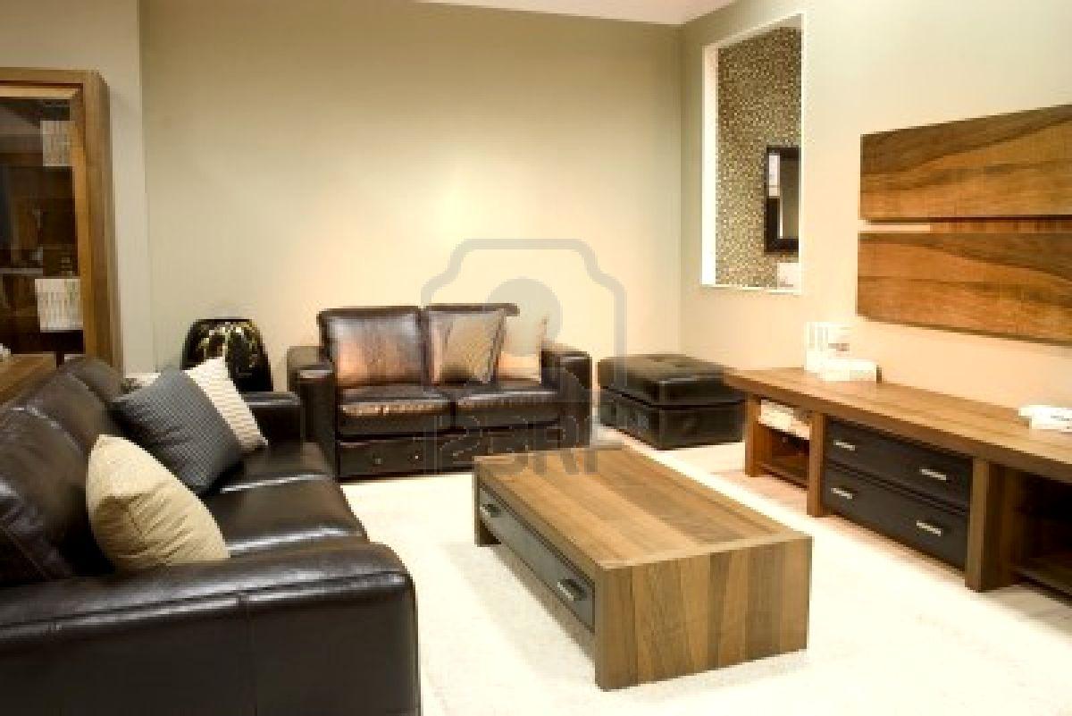 Decoraci N Minimalista Y Contempor Nea Hermosas Salas Modernas
