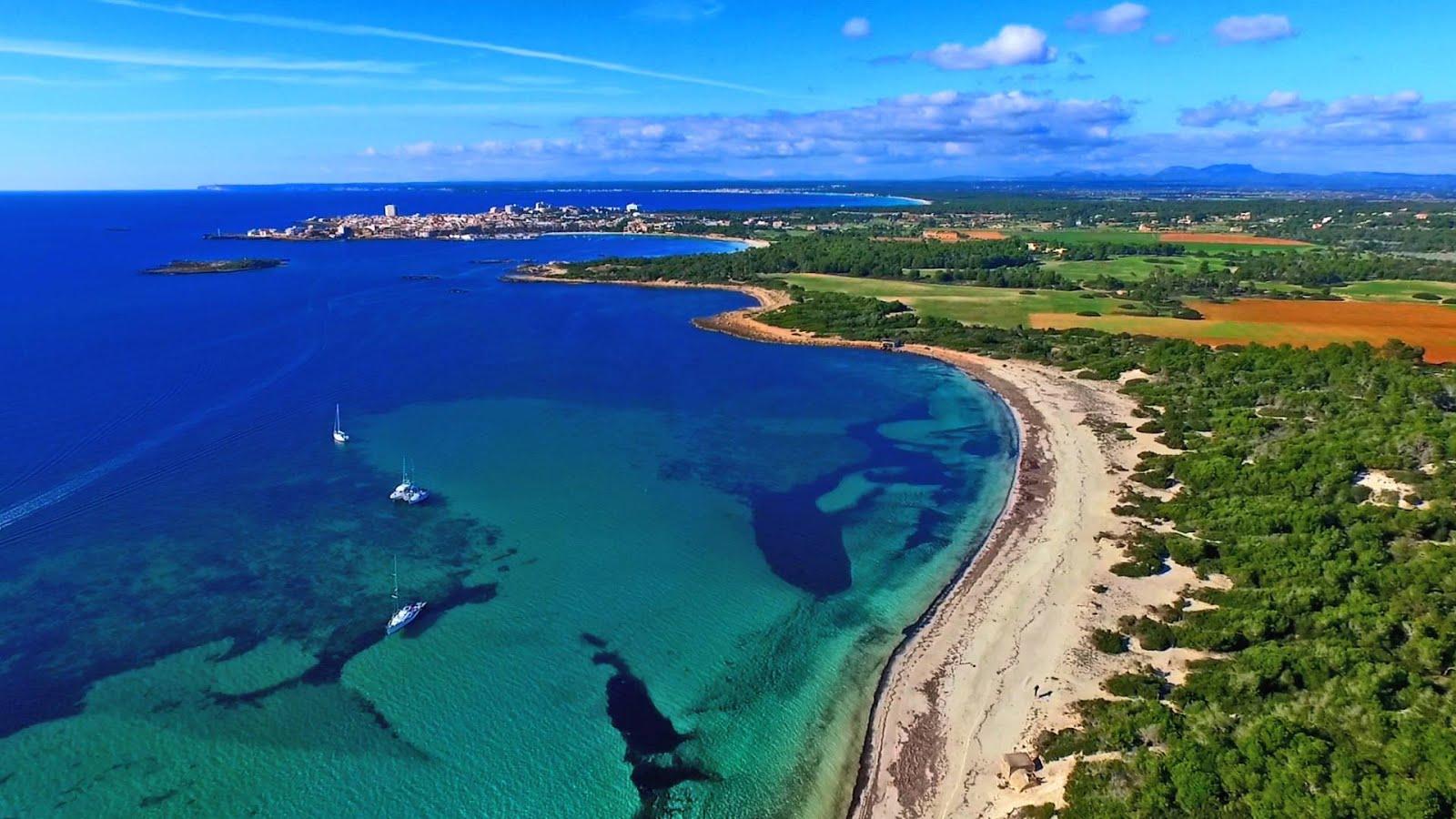 Vacaciones en Mallorca?