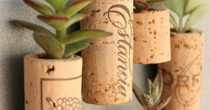 Upcycle Us: Upcycling corks...