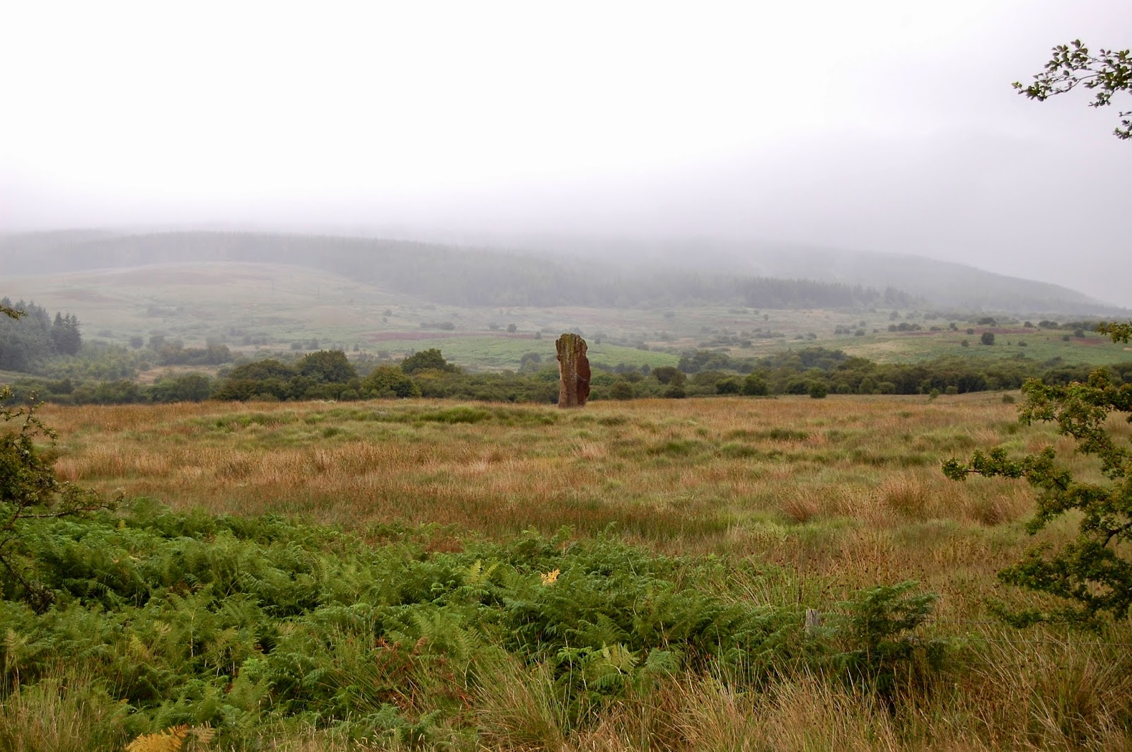 Solitary sentinel stone at Machrie Moor