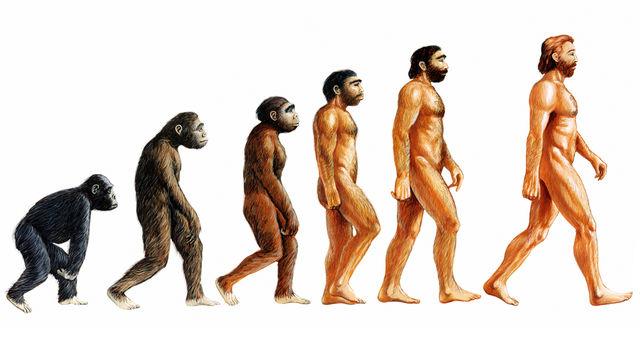 Charles Darwin as a Monkey