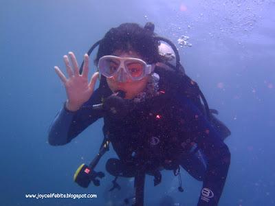 diver say hi underwater tioman joyce yap shu ling blog joycelifebits