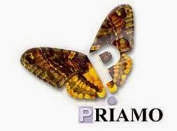 FONDO PRIAMO - CLICCA E VAI ALLA PAGINA