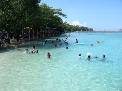Shoreline Island Resort Madeira Beach Reviews