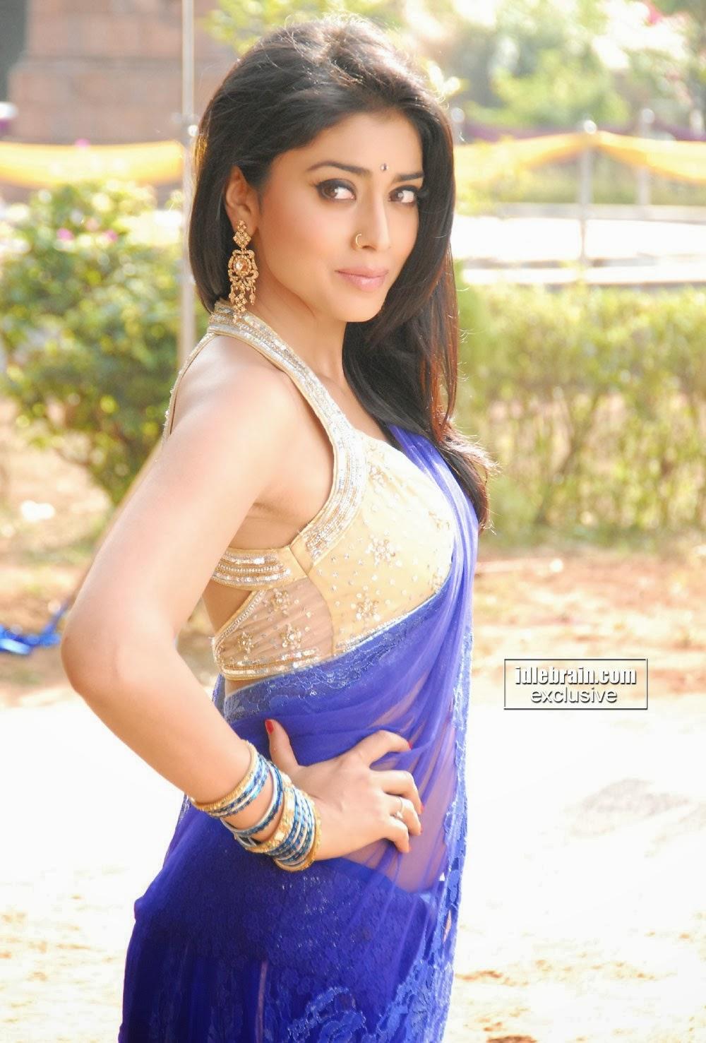 indian actress shriya saran hot top 12 images - 9 image- movie