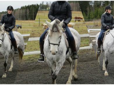 Kasarikorkkiruuvi ratsastusterapiassa