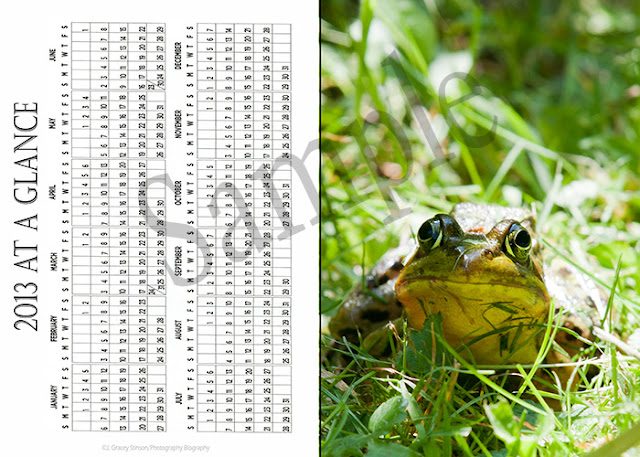 2012 pocket calendar - outside cover showing 2013 calendar and a green frog