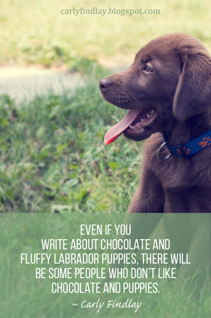 "Pic of brown labrador puppy, quote: ""Even if you write about chocolate and fluffy Labrador puppies, there will be some people who don't like chocolate and puppies."""