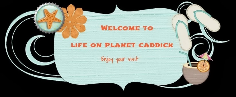 Life on Planet Caddick