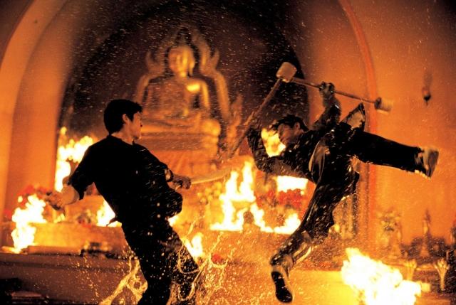 Phim Người Bảo Vệ - The Protector - Revenge Of The Warrior