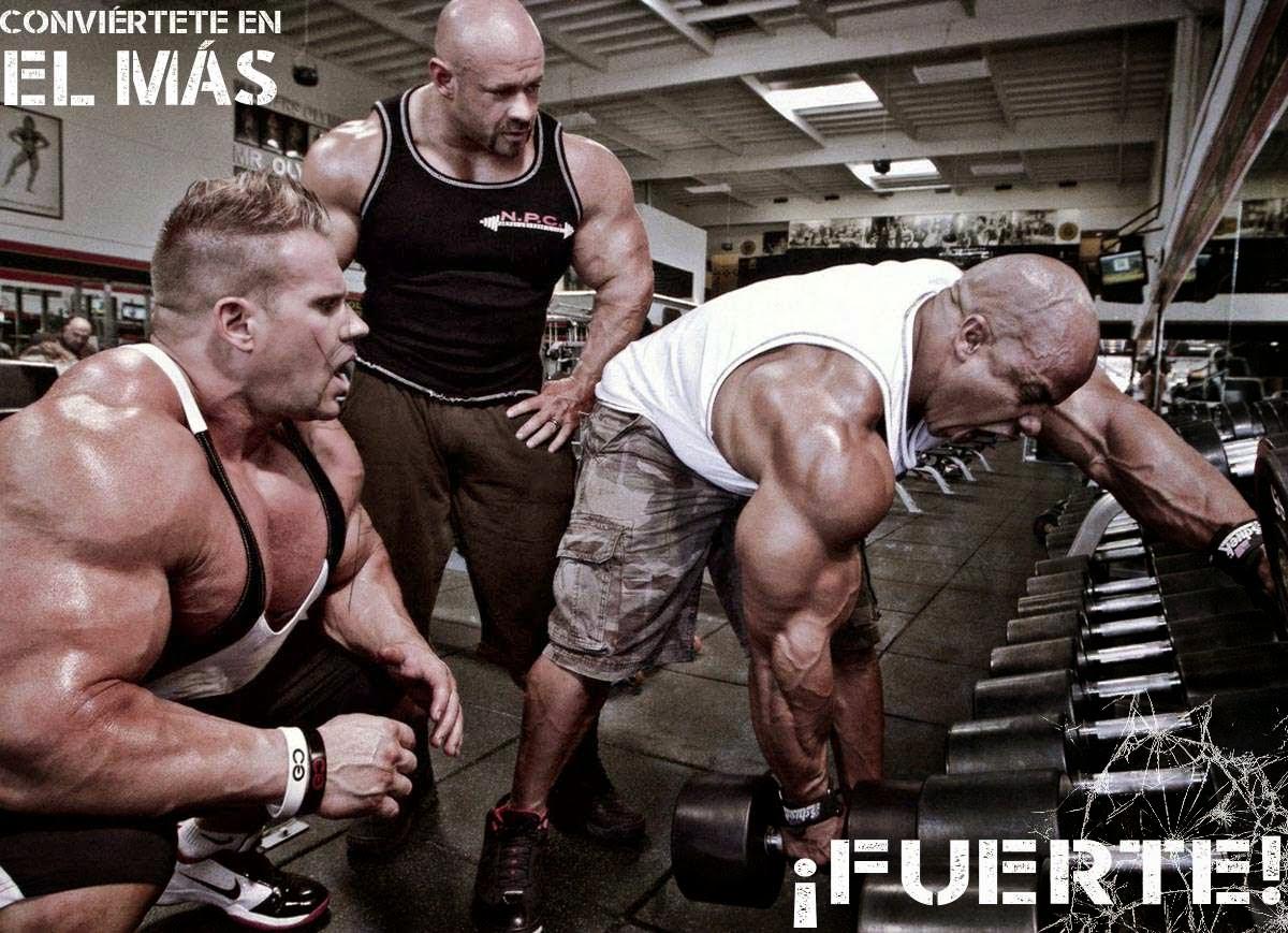 S el m s fuerte del gimnasio fle fitness for Gimnasio el gym