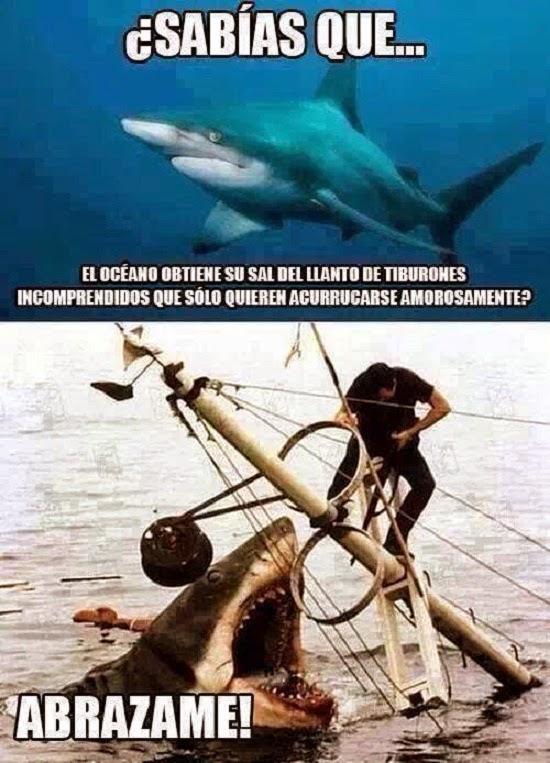 Por eso el mar es saladito