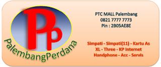 http://www.palembangperdana.com/