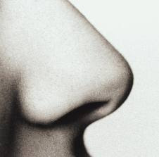 rahasia-lobang-hidung-manusia