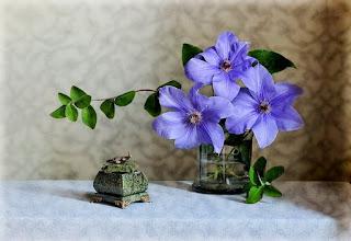 Fantasticas Flores Intensos Colores