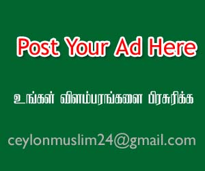 Post Your Advertisement Here