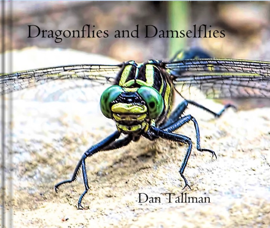 NEW  EDITION: Dragonfly eBook $9.99. Also other formats.