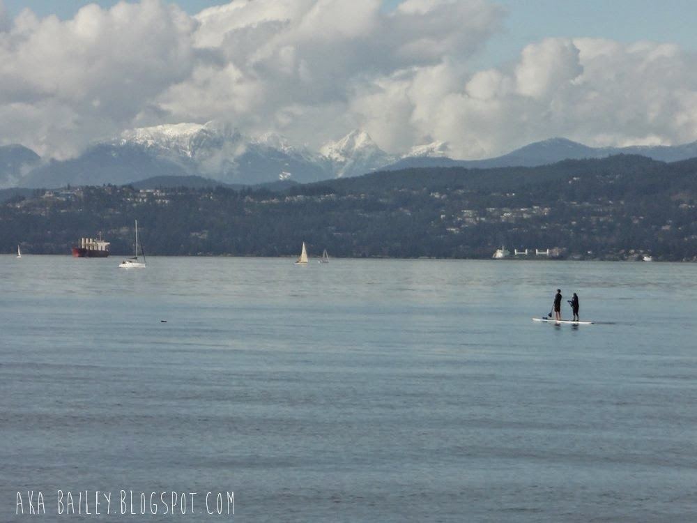 Paddle boarders in Vancouver's English Bay