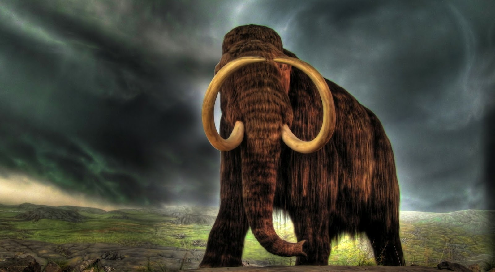 http://2.bp.blogspot.com/-CiP_HN59vkw/UE3P3Yp7xkI/AAAAAAAABeI/dnzuNIfAJiY/s1600/mammoth-wallpaper-1920x1080.jpg