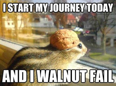 I start my journey today and i walnut fail