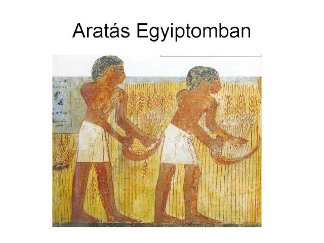 aratás Egyiptomban