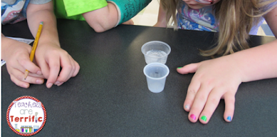 STEM Challenge: This is a great experiment and design challenge. Students experiment and then design new things to test! Blog post with photos!