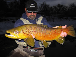 TRUCKEE RIVER BROWN